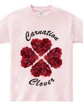 Carnation clover