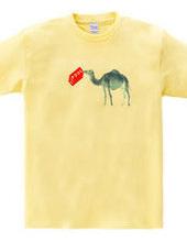 Limit camel
