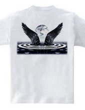 Wings of the silver on the back