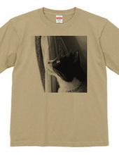 TuxedoCat By the window Monochrome