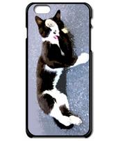 Tuxedo Cat Black&White / Grooming iP