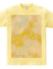 Sunflower_tsc02