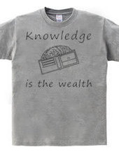 Knowledge is the wealth