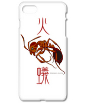 Red imported fire ant 2017