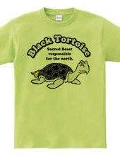 Black Tortoise