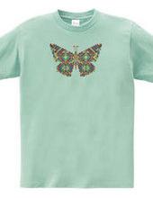 Butterfly06