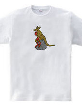 Thinking Kangaroo