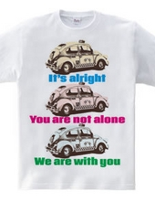 You are not alone. TAXI-type1