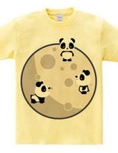 Pandas On The Moon