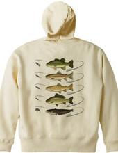 Freshwater fish_2FB